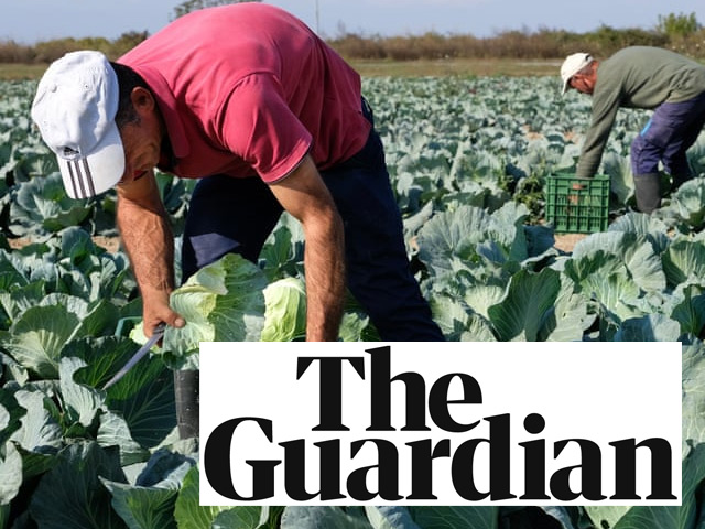 'We're humus sapiens': the farmers who shun animal manure – THE GUARDIAN 01.12.19