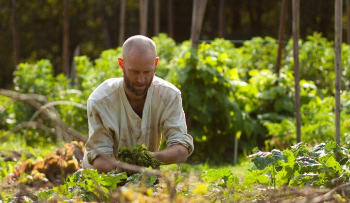 Biocyklisk vegansk odling –  new biocyclic vegan association created in Sweden